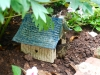 occupied toad house